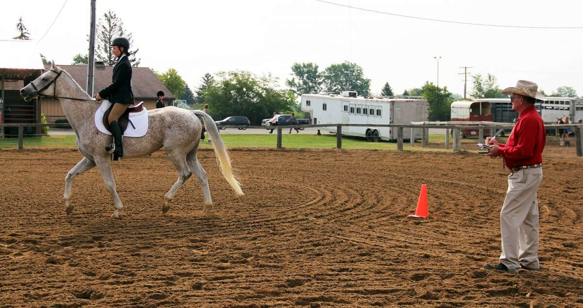 The Huron Community Fair continued with horse, rabbit and sheep judging. Allison Holdwick was also crowned the 2019 Huron County Bean Queen.