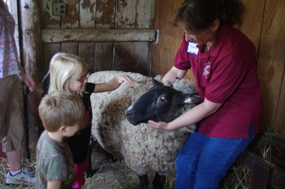 Katie and Raymond Karboske feel Ewe Who's coat before the shearing begin at Circle Rocking S Children's Farm on Tuesday. Nancy Supran, executive director of Circle Rocking S Children's Farm, holds Ewe Who. (Dave Yarnell/News Advocate)