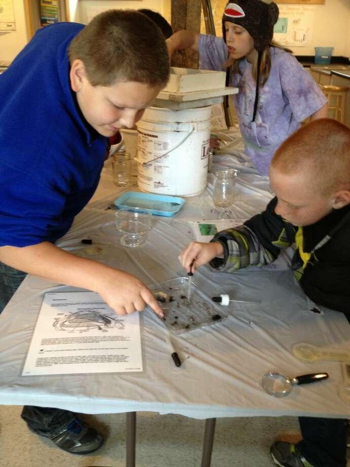 Dalron Gray and Kolin Cook examine some midge larva aboard the Inland Seas.