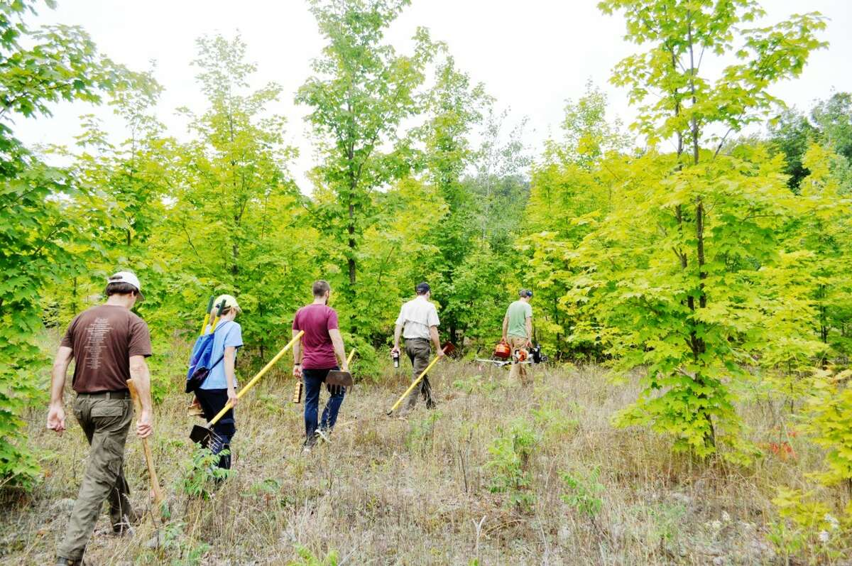 News Advocate photos/Eric SagonowskyGrand Traverse Regional Land Conservancy land steward Steve Lagerquist leads volunteers through the woods during a trail building session at the Arcadia Dunes C.S. Mott Nature Preserve.