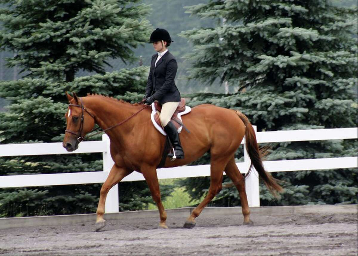 Manistee resident Jane Bond will be riding her horse Comet at the Michigan State 4-H Horse Show on Saturday in Lansing. (Courtesy Photo)