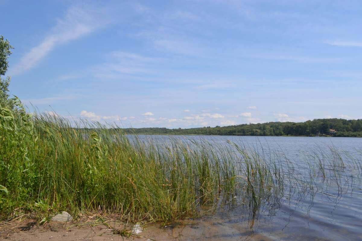 Biologists with Restorative Lake Sciences are completing a study of Bar Lake, an inland Manistee Township lake troubled by weed growth and falling water levels. (Meg LeDuc/News Advocate)