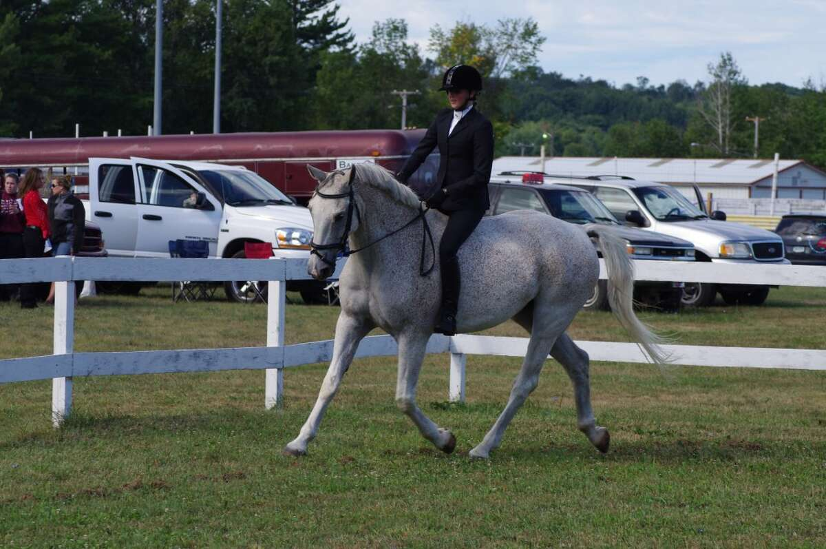 The Manistee County Horse Show will be starting at 10 a.m. on Sunday, Aug. 18 at the Manistee County Fairgrounds.