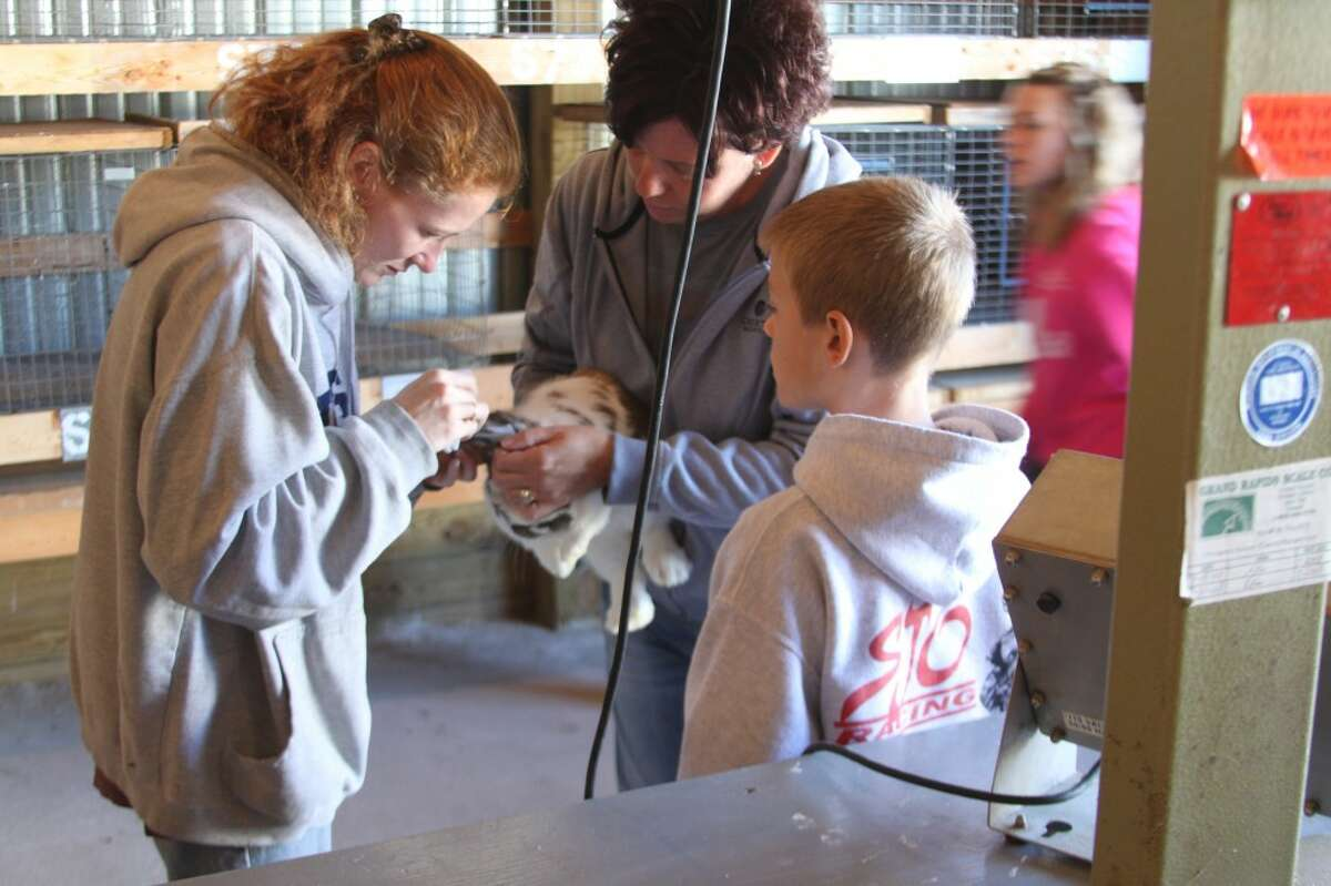 Beth Buckner and her son Brendan check in one of his rabbits to be part of the 4-H competition at the fair this year.