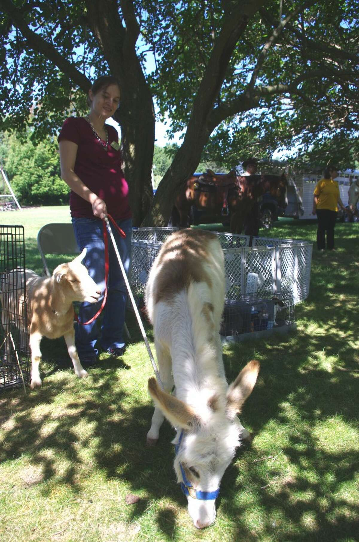 Cassi Johnson brought a few of the animals from her small farm near Custer to Down on the Farm Day at White Pine Village on Thursday. (Dave Yarnell/News Advocate)