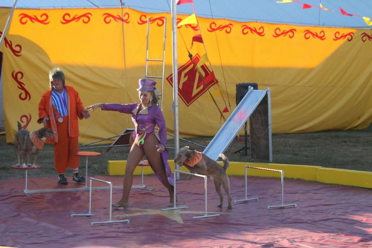 The Fantazia Circus was one of the many popular events at the Manistee County Fair this year.