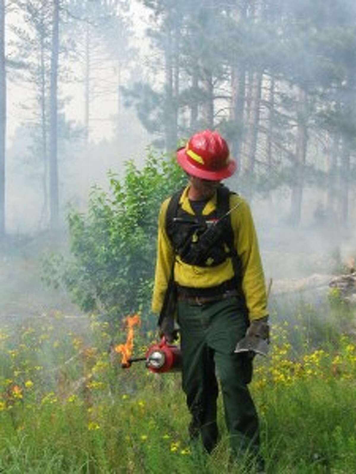 A ranger works to set prescribed fires, which are used to clear areas of trees and other debris, and bring back the savanna habitat.