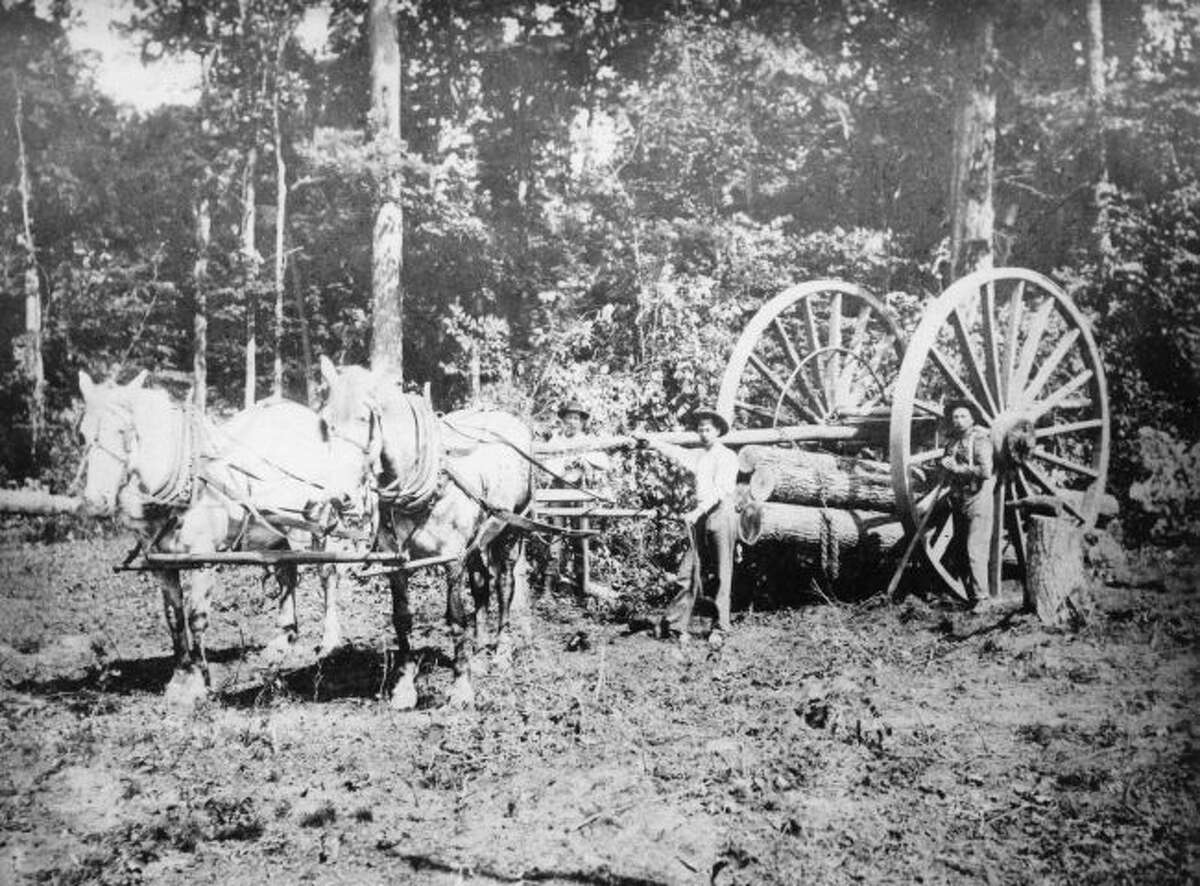 The Silas Overpack wheels were a popular way of getting logs out of the woods during the height of the lumber industry in Manistee County.