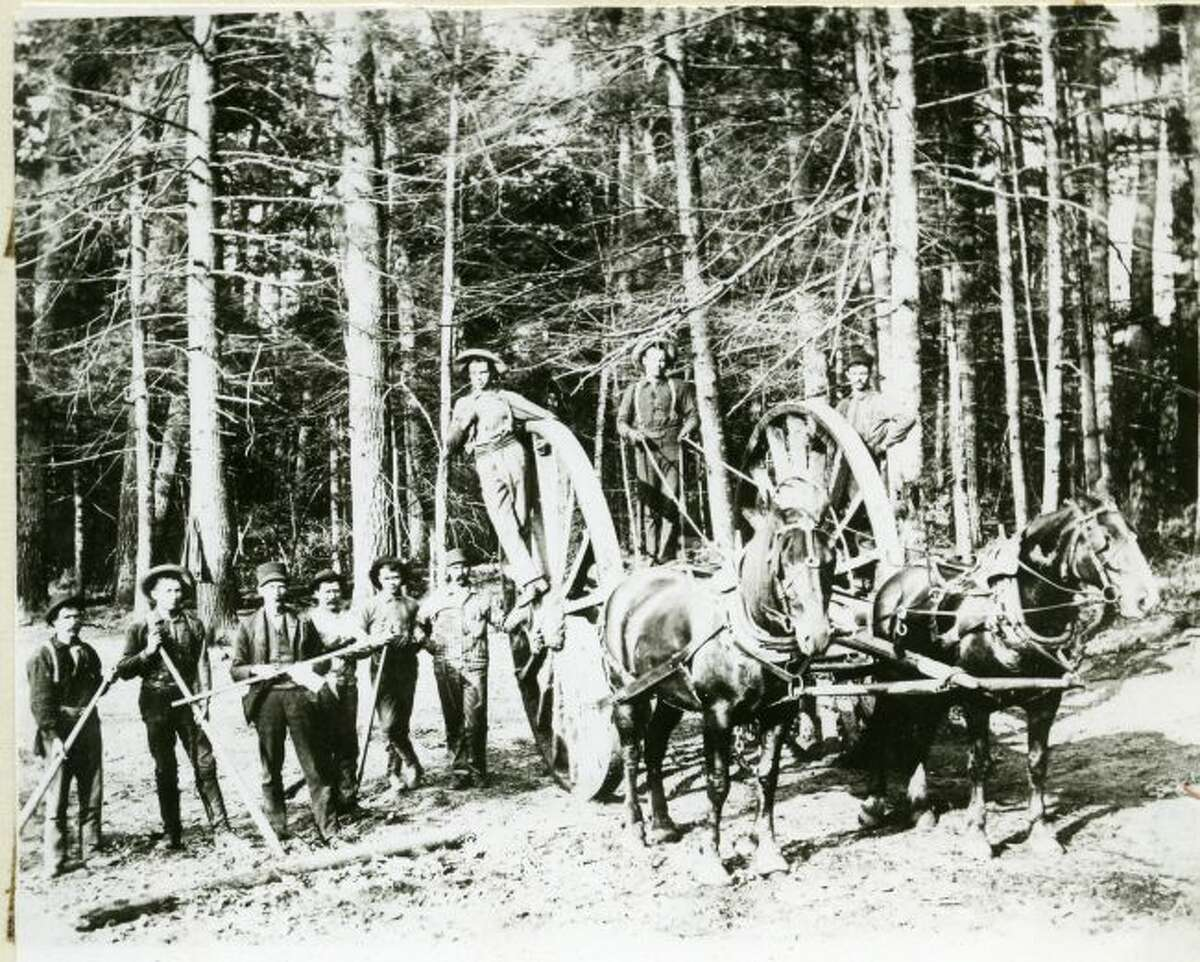 This group of lumberjacks proudly pose for this 1890s photograph in the woods outside of Manistee.