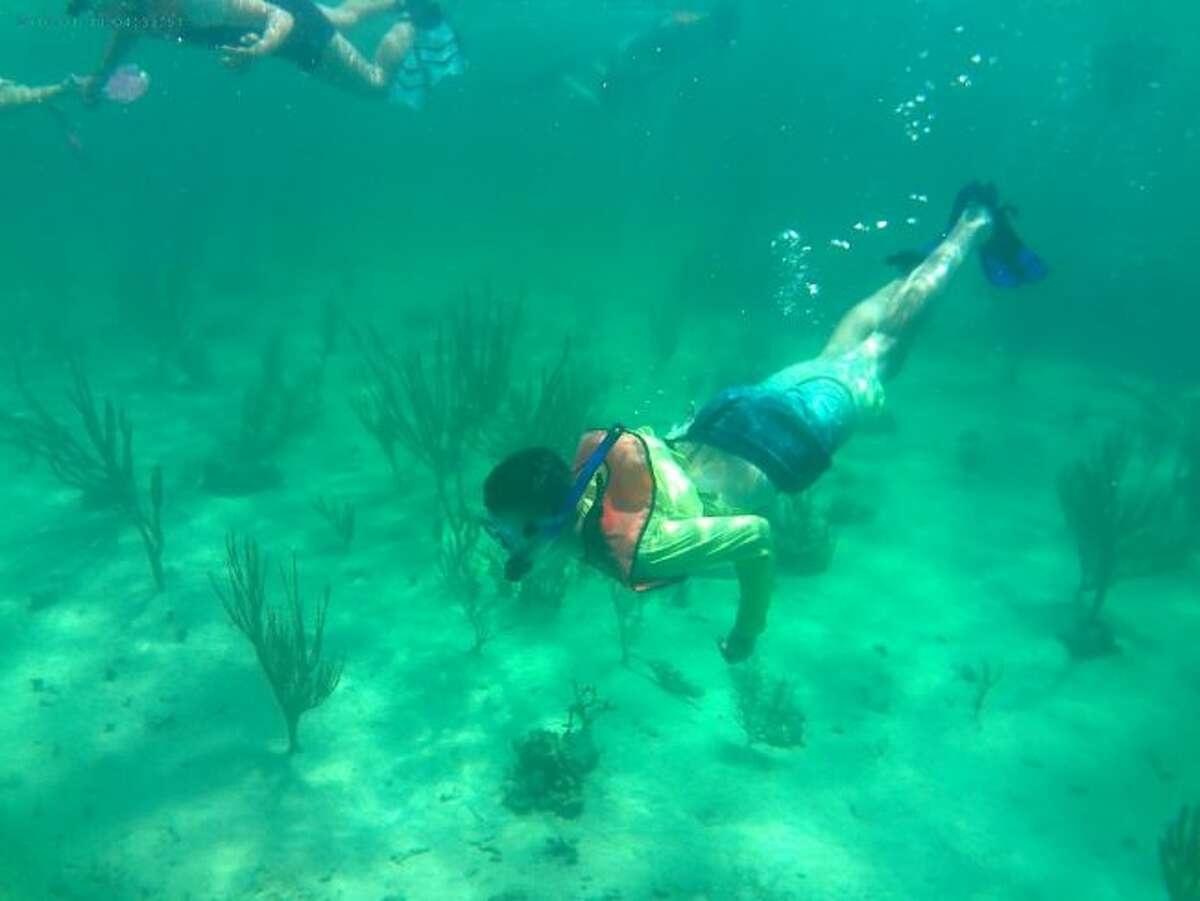 Mason Adamski duck dives to take a look at some sea whips during the recent educational trip high school students made to Andros Island in the Bahamas.