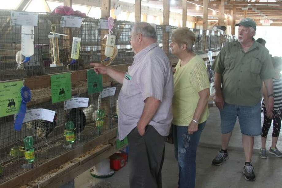 People view the animal exhibits in the 4-H buildings that had already been judged and won a ribbon.