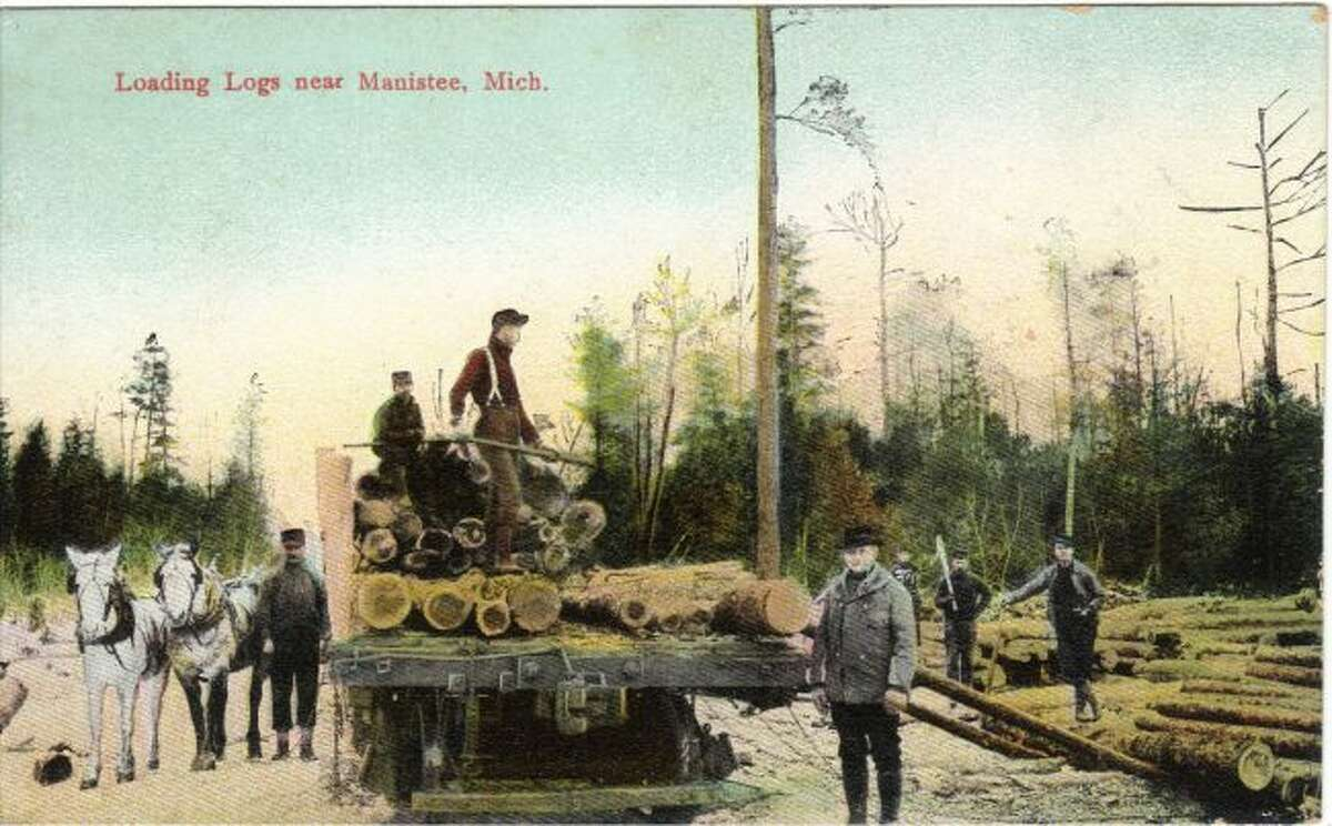 This is a scene from a logging crew in the Manistee Forest.