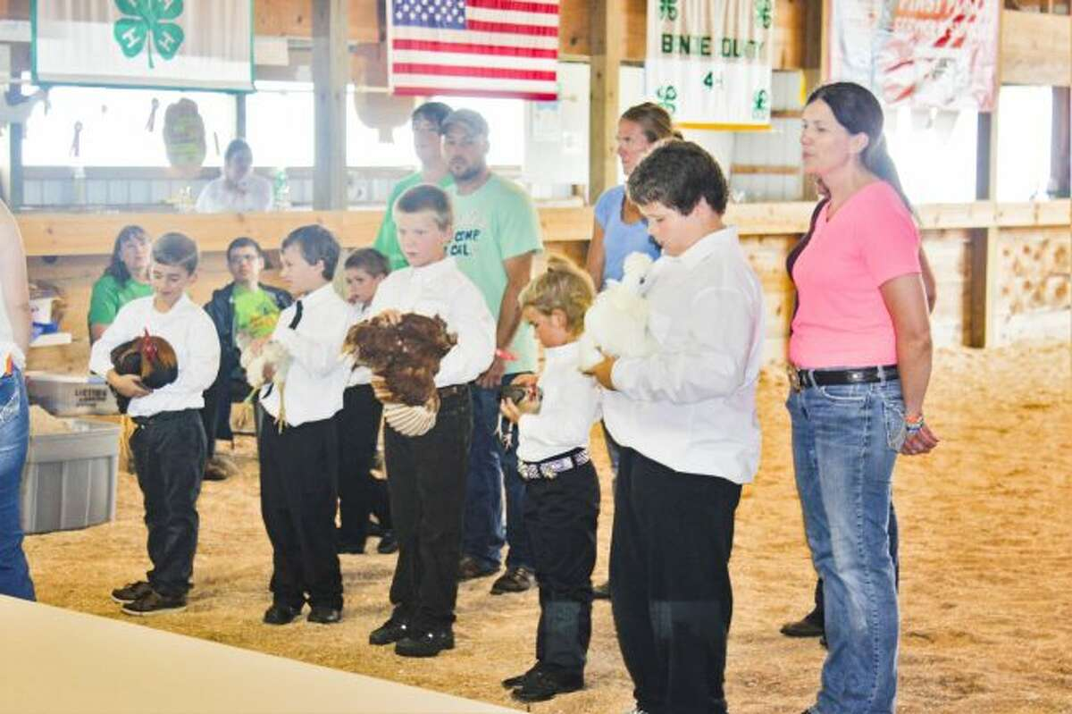 4H judging kicks off with some its youngest members showing off their chickens.
