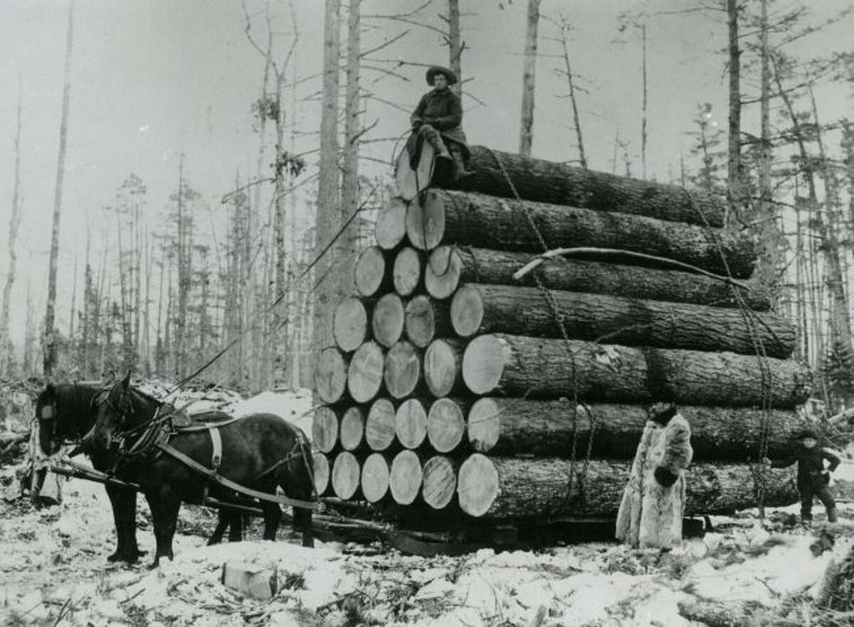 Lumberjacks stack up another big load of logs to ship off to the sawmill for processing in this picture from the 1890s in Manistee County.
