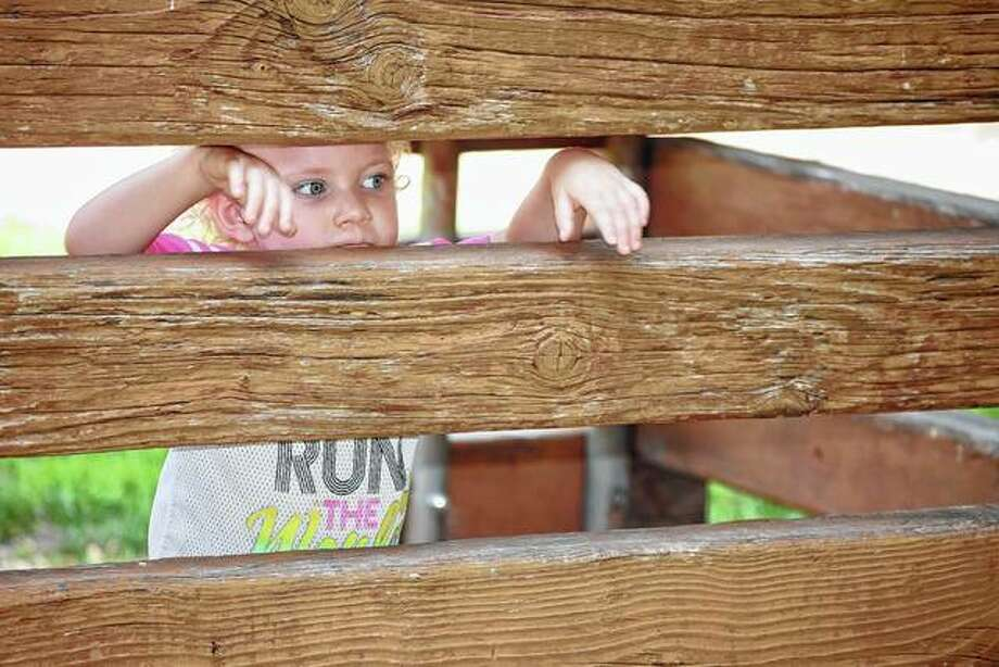 Lennix Burke, 2, the daughter of Christina Dye and Cory Burke of Jacksonville, peeks Tuesday from between the slats of the wooden playhouse at Duncan Park. Photo: Samantha McDaniel-Ogletree | Journal-Courier