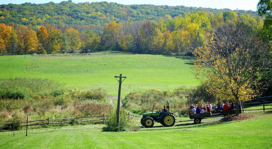 Fall's brilliant foliage serves as the perfect backdrop to a hayride at Sullivan Farm during its annual fall festival at 140 Park Lane (Route 202) in New Milford. Oct. 12, 2013 Photo: Trish Haldin / Trish Haldin / The News-Times Freelance