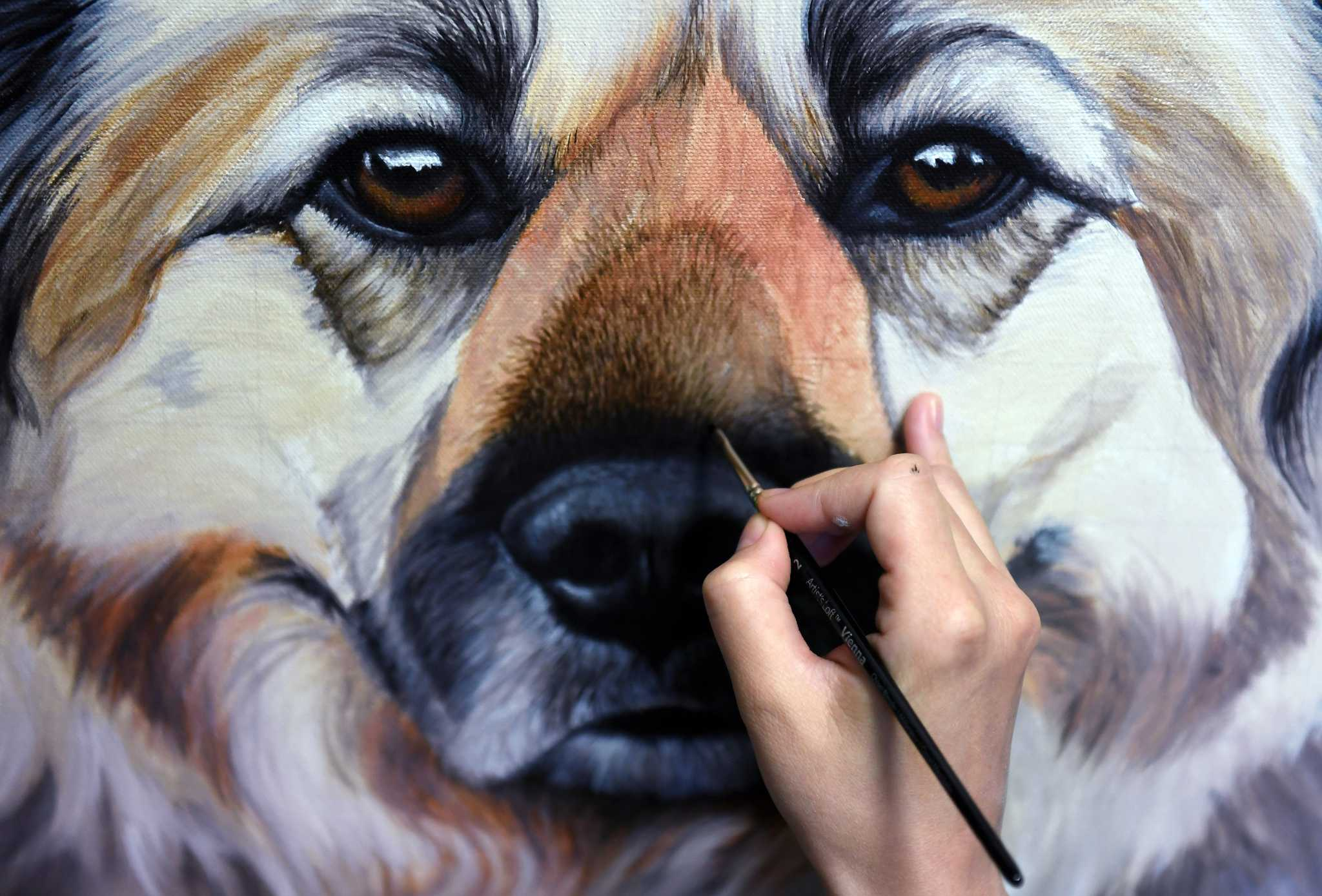 legitimate work from home jobs in texas virginia woman quit her job to paint pet portraits now 2479
