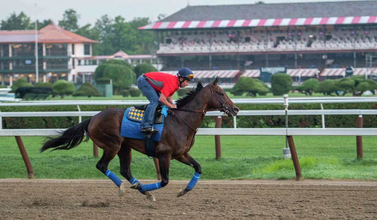 Whitney Stakes entrant McKinzie with exercise rider Simon Harris aboard takes to the main track at daybreak for his first look at the Saratoga Race Course Wednesday, July 31, 2019 after shipping from California yesterday. Photo Special to the Times Union by Skip Dickstein.