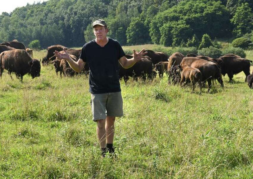 Brian Grubb talks about the 75 bison who escaped from his Bison Island on Monday, July 29, 2019 in Sharon Springs, N.Y. About a third of his bison escaped last week and have been roams rural upstate New York.
