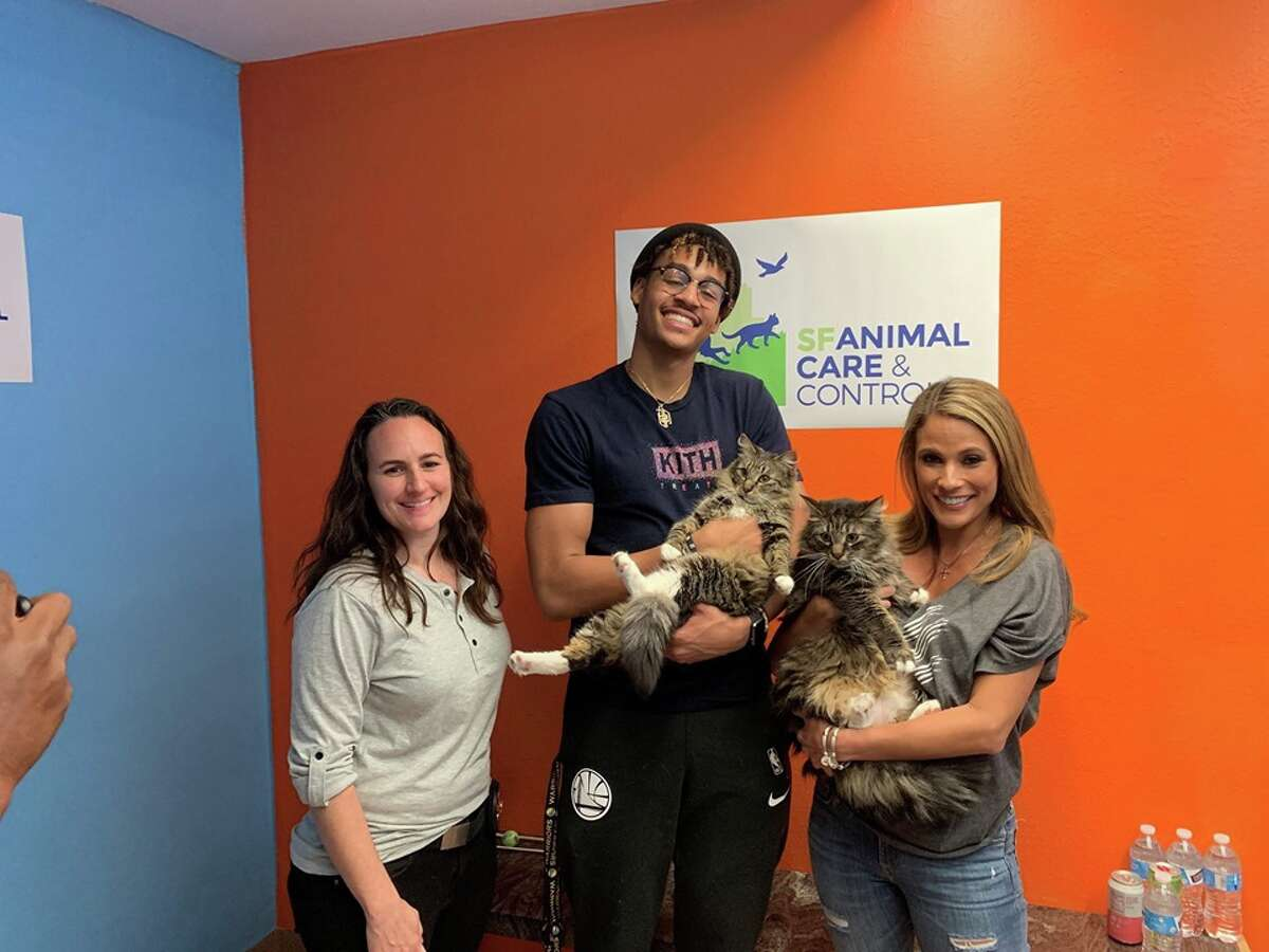 New Golden State guard Jordan Poole adopted a pair of rescued cats - brothers named Kai and Kota - from San Francisco Animal Care & Control.