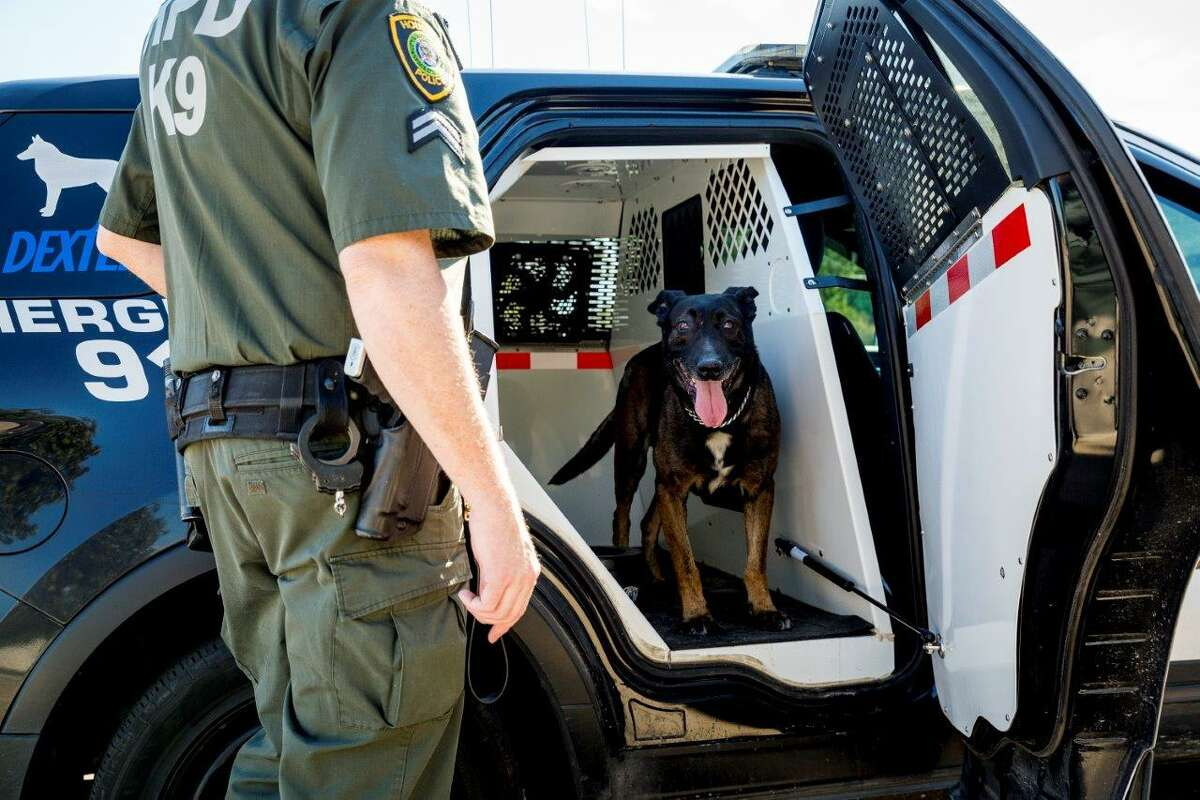 K9 Dexter, like any other K9 in the HPD patrol division, rides with his handler in a custom police cruiser.