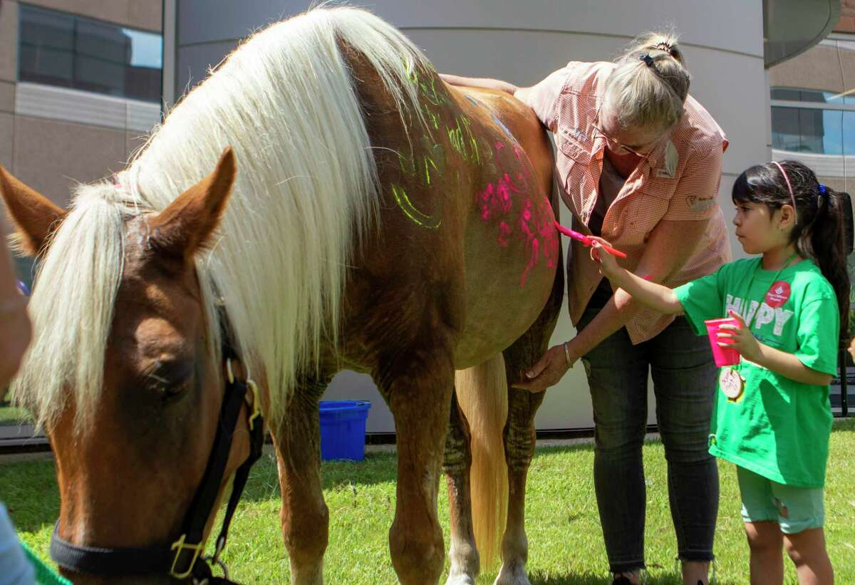Samantha Torres uses non-toxic paint to draw on the side of Stormy the horse during a Camp For All 2U event Wednesday, July 31, 2019 at Texas Children's Hospital The Woodlands.