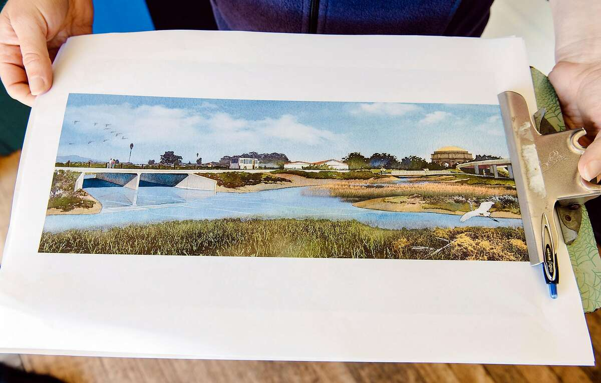 Genevieve Bantle of the Presidio Trust holds a rendering of what the restored Quartermaster Reach, a 6-acre area of the Tennessee Hollow Watershed that will be used to expand Crissy Marsh, will look like once it is finished in San Francisco, Calif., on July 11th, 2019.