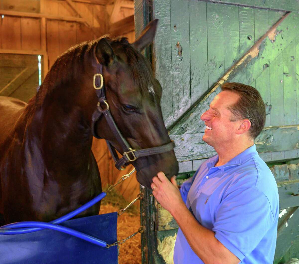 Trainer Tom Amoss enjoys a playful moment with his filly, Kentucky Oaks winner Serengeti Empress in the barn area at the Saratoga Race Course Thursday, Aug. 1, 2019 in Saratoga Springs, N.Y. Photo Special to the Times Union by Skip Dickstein
