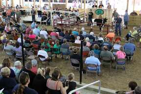 The Huron Community Fair continues with the JLA Auction, featuring sheep, swine, prospect feeders, and market beef. Rayley Jeffers also won the Small Livestock Sweepstakes Contest that night. The day capped off with redneck truck races.