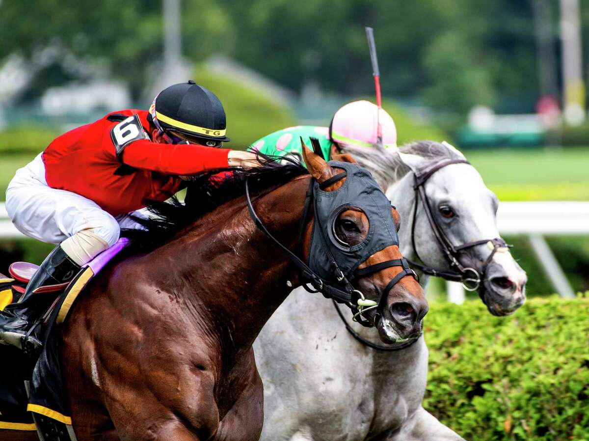 Leinster with jockey Tyler Gaffalione aboard out duels second place Pure Sensation to the wire to win the 16th running of The Troy at the Saratoga Race Course Saturday, Aug. 3, 2019 in Saratoga Springs, N.Y. Photo Special to the Times Union by Skip Dickstein