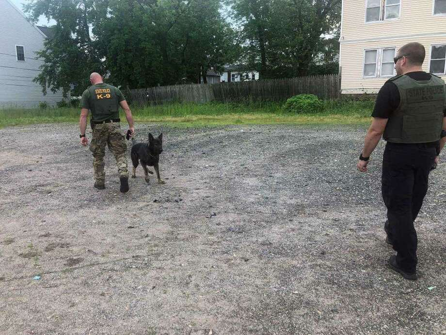 State police K-9 units on May 31 search a stretch of Albany Avenue in Hartford where Fotis Dulos was seen dumping trash bags the night of his wife's disappearance, according to arrest warrants. A Hartford man said last week he discovered a bloodied pillow and a knife in one of the trash bins a few days after Jennifer Dulos vanished. Photo: Kaitlyn Krasselt / Hearst Connecticut Media