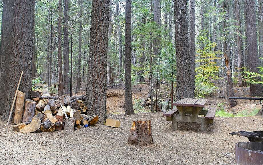 A gorgeous wooded campsite at Cherry Valley Campground on Cherry Lake in Stanislaus National Forest Photo: Tom Stienstra / Tom Stienstra / The Chronicle