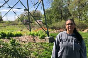 Darlene Masciola, with the transmission tower in the background, is still seeking Eversource help in refurbishing her property, which was left in a poor state after tree trimming in January.