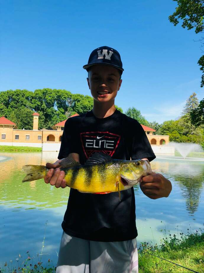 Fourteen-year-old George Abdo of Glenmont caught a 3-pound, 5-ounce, yellow perch on Monday, Aug. 5, 2019, in Albany's Washington Park Lake. Keep clicking through the slideshow for big (and sometimes little) catches in the state's freshwater lakes and rivers.  Photo: Provided By Nicholas Abdo