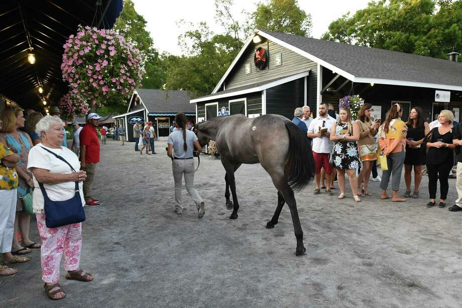 People watch yearlings being walked by as the Fasig-Tipton Saratoga Sale of Select Yearlings has started on Monday, Aug. 5, 2019 in Saratoga Springs, N.Y. (Lori Van Buren/Times Union) Photo: Lori Van Buren, Albany Times Union / 40047597A