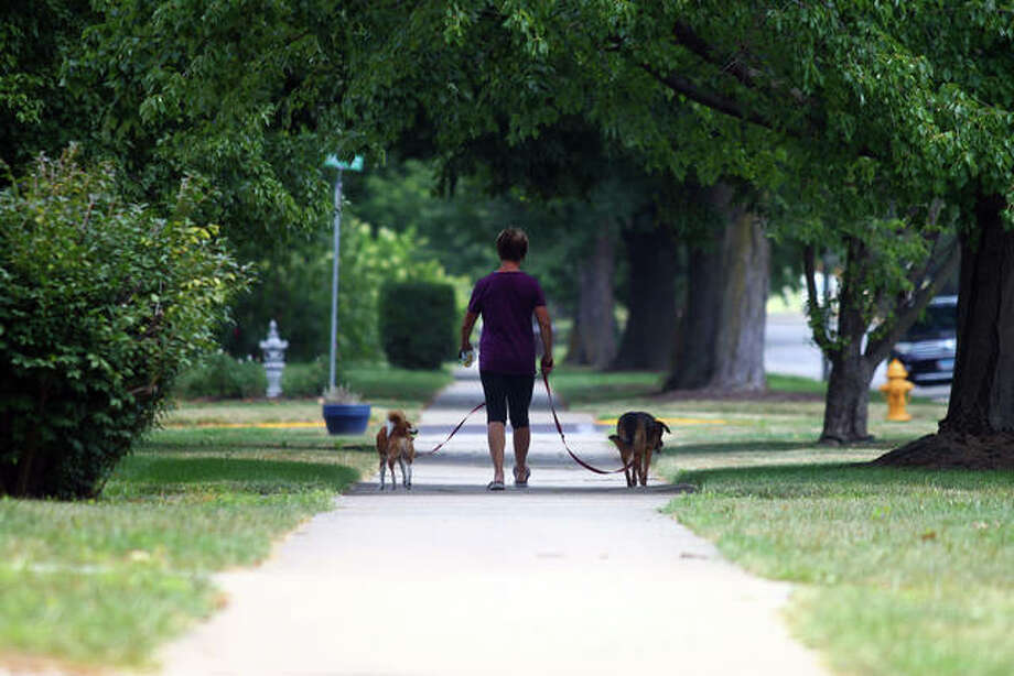 Sue Hall, Elsie and Georgie walk along West State Street on a hot and sunny Monday. The rest of the week, temperatures are expected to stay in the mid-80s with showers and thunderstorms forecast for Tuesday and Thursday. Photo: Rosalind Essig | Journal-Courier