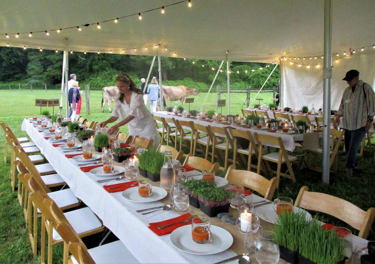 Setting up tables decorated with small river stones and potted herbs, against a background of friendly meandering cows.