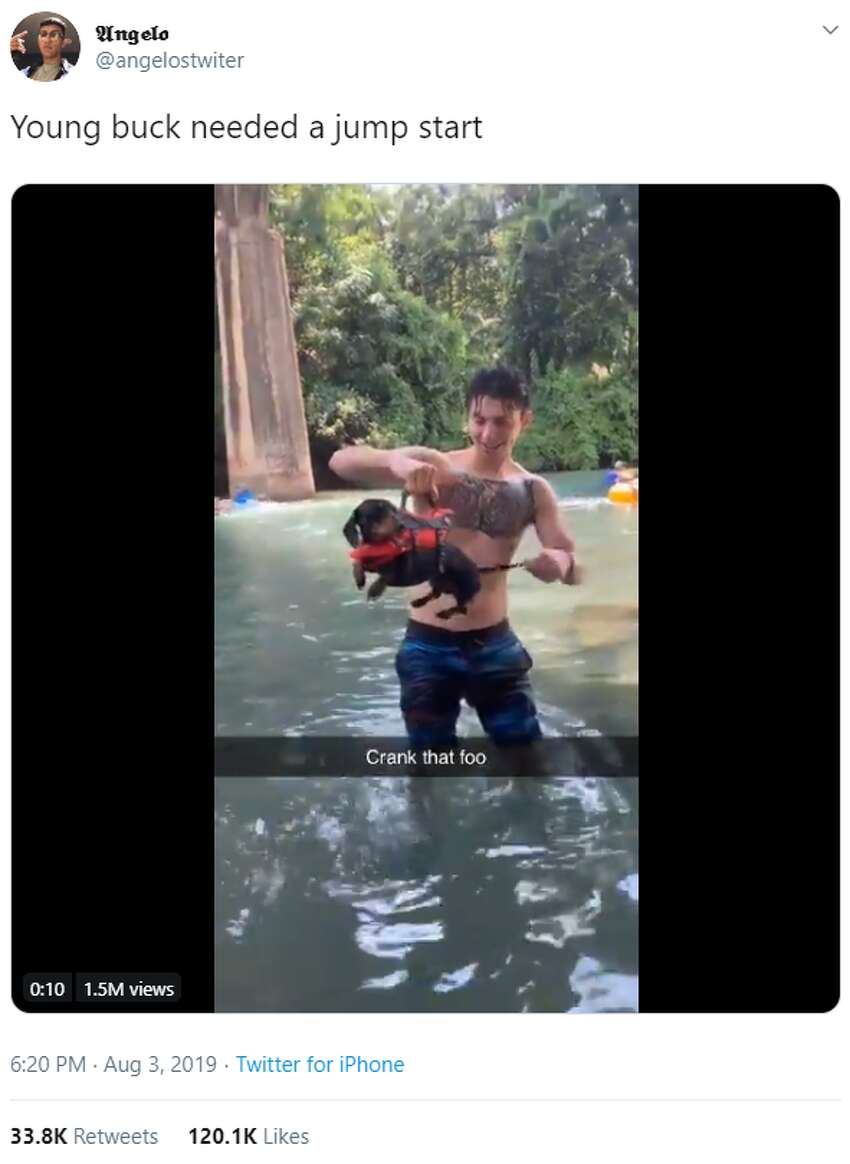 A San Antonio dog on the Comal River got a 'jump start' In the viral video, Richard Wallace holds his dog above the water by the handle on his life vest. As Wallace playfully turns Ollie's tail like a windup toy, the dog's little legs start peddling and he takes off into the water. Watch the