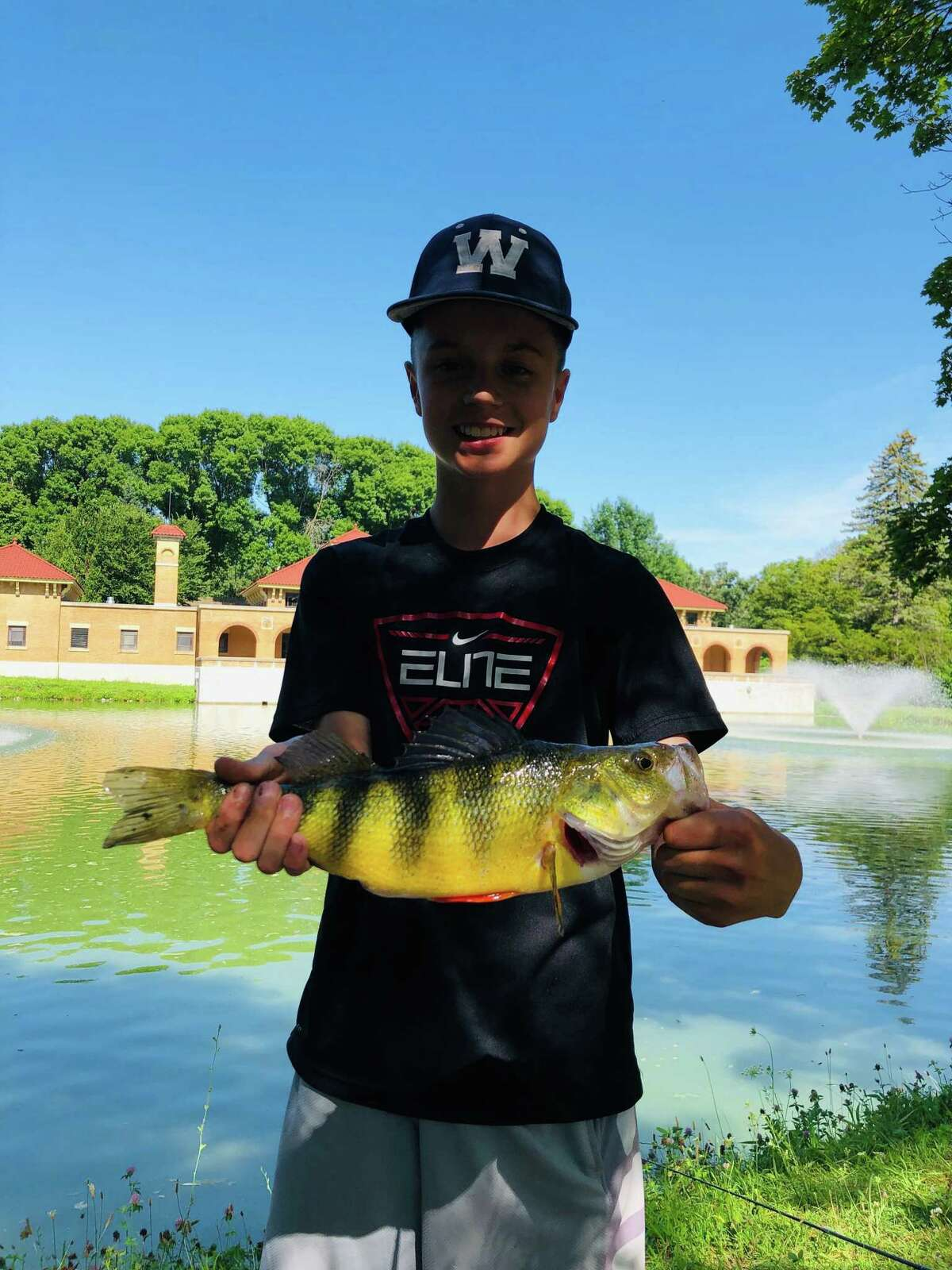 George Abdo, 14, caught this yellow perch on Monday at Albany's Washington Park Lake, estimated at 3 pounds, 5 ounces. That comes close to the New York state record yellow perch weight of 3 pounds, 8 ounces, dating from 1982 in Lake Erie, says his dad, Nick Abdo of Glenmont. George was fishing with his brother Christian, 17.