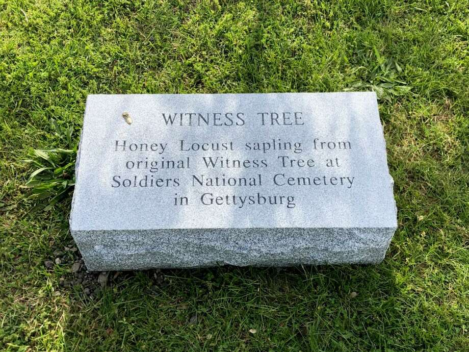 Darien's August Monument of the Month is the Witness Tree monument donated by the Darien Police Commission. Photo: David Polett
