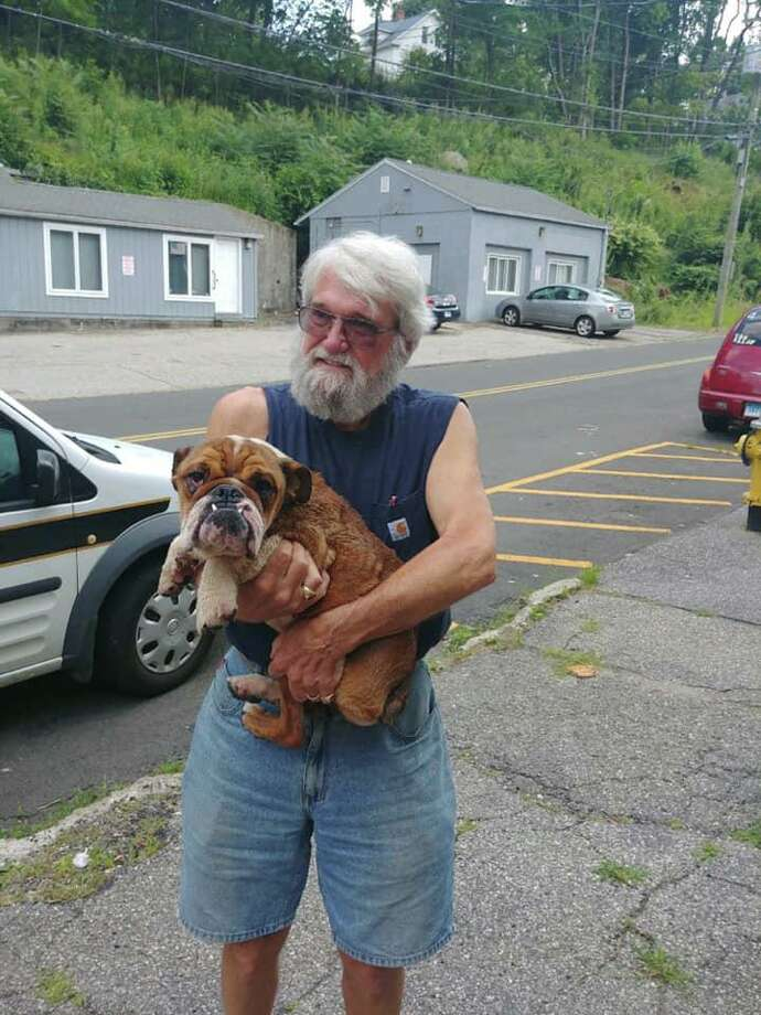 Charlie, lost for more than a month after running away during the July 3 fireworks, has been found safe. Charlie was found in a ravine near Bridgeport Avenue. Photo: Contributed Photo / Connecticut Post