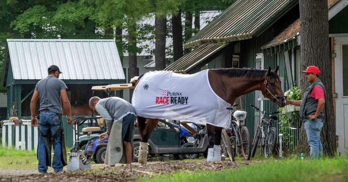 A horse has some new shoes applied in the barn area on the back stretch of the Saratoga Race Course Wednesday Aug. 7, 2019 in Saratoga Springs, N.Y. Photo Special to the Times Union by Skip Dickstein
