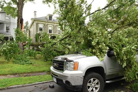 Heavy rain downs trees during mid-afternoon storm - Times Union