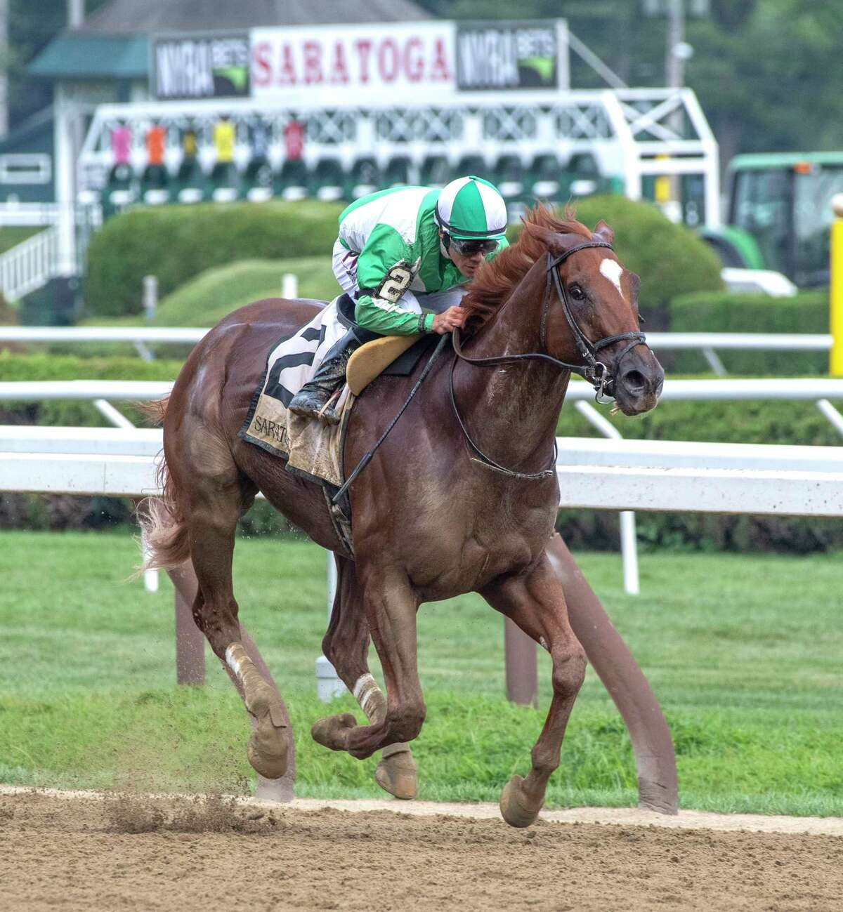 Mr. Buff with jockey Junior Alvarado makes it an easy win in the 38th running of the Evan Shipman the Saratoga Race Course Wednesday Aug. 7, 2019 in Saratoga Springs, N.Y. Photo Special to the Times Union by Skip Dickstein