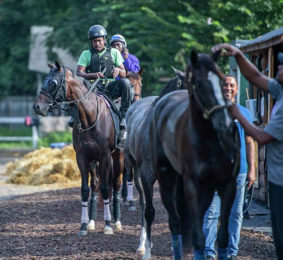 Tuggle trained by Jeremiah Englehart heads out for his morning exercise from his barn at the Oklahoma Training Center track adjacent to the Saratoga Race Course Thursday Aug. 8, 2019 in Saratoga Springs, N.Y. Tuggle is named for the late John Tuggle, a former player for the New York Giants under coach Bill Parcells who owns the horse.  Photo Special to the Times Union by Skip Dickstein