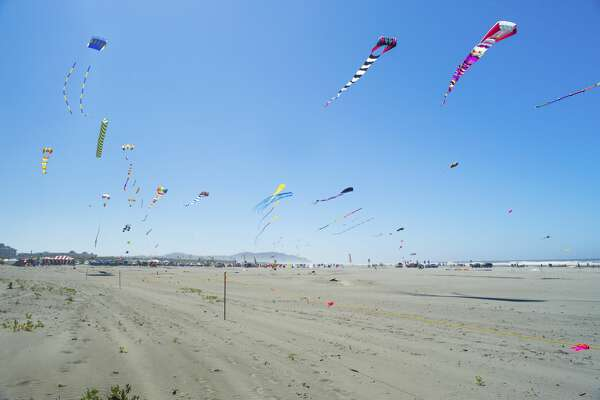 Kites flying on the sky at the Long Beach Kites Festival in Washington.