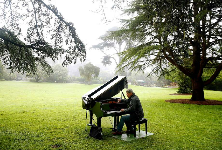 John McArdle tunes a baby grand in the Great Meadow for the fifth annual Flower Piano event at the SF Botanical Garden in San Francisco on Friday, July 12, 2019. Photo: Paul Chinn, The Chronicle