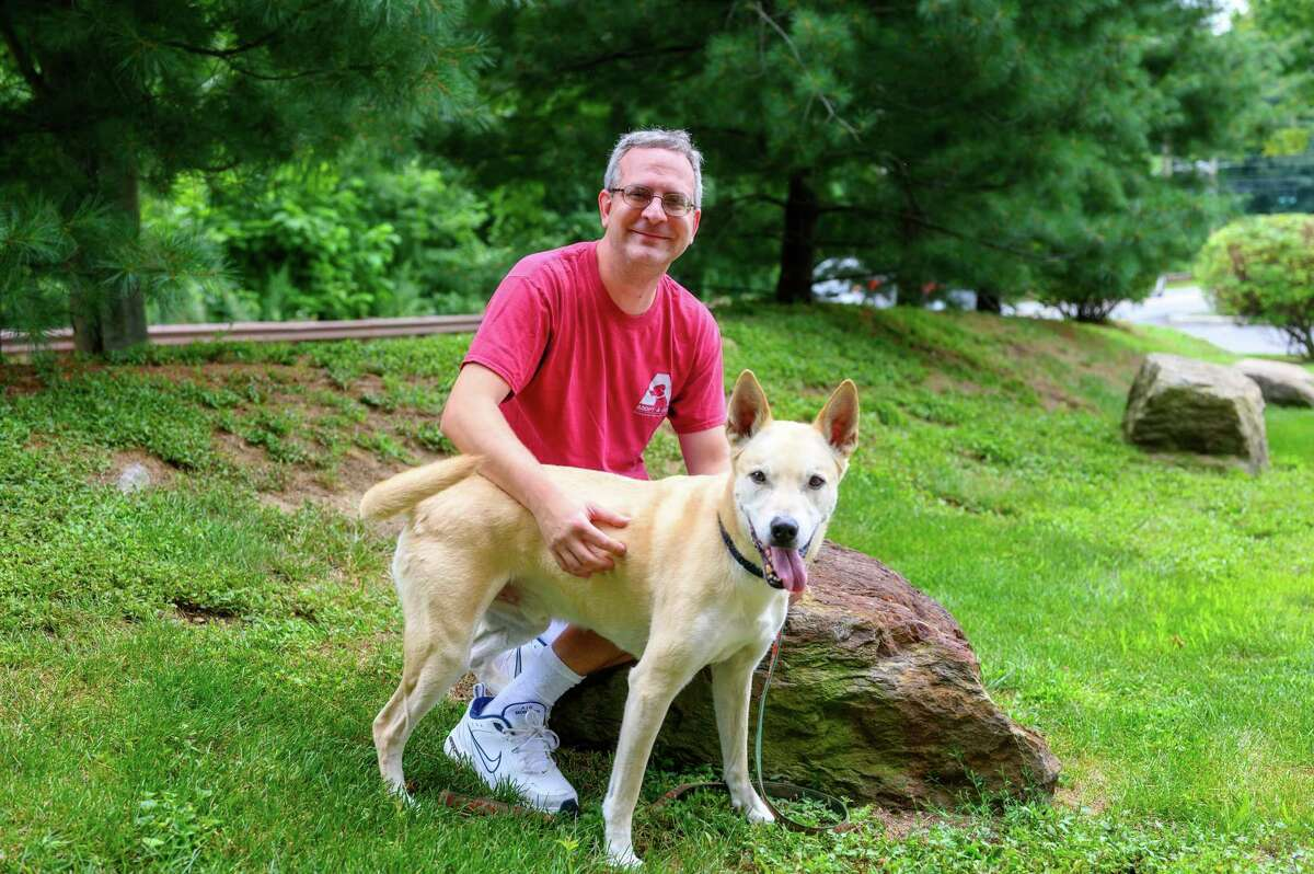 Adopt-A-Dog in Armonk will take part in a pet adoption blitz known as Clear the Shelters on Saturday. Adoption fees will be waived at the fifth annual event. Dogs will be available to visit and adopt from 9 a.m. to 3 p.m. at Adopt-A-Dog at 23 Cox Ave. For more information, visit adopt-a-dog.org, call 914-273-1674 or email adoptions@adoptadog.org.