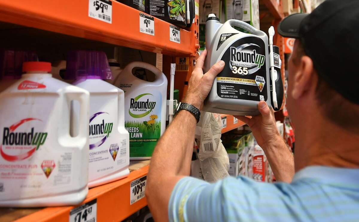 (FILES) In this file photo taken on July 9, 2018, customer Gary Harms holds up a Roundup product at a store in San Rafael, California. - One year after taking over US seeds and pesticides maker Monsanto in a $63 billion gamble, the payoff for German chemicals and pharmaceuticals giant Bayer remains in question as it battles a massive wave of lawsuits over flagship weedkiller. Bayer said on July 30, 2019 it is now targeted in some 18,400 US legal cases over glyphosate (Roundup), a key herbicide ingredient that plaintiffs say caused grave illnesses like cancer.
