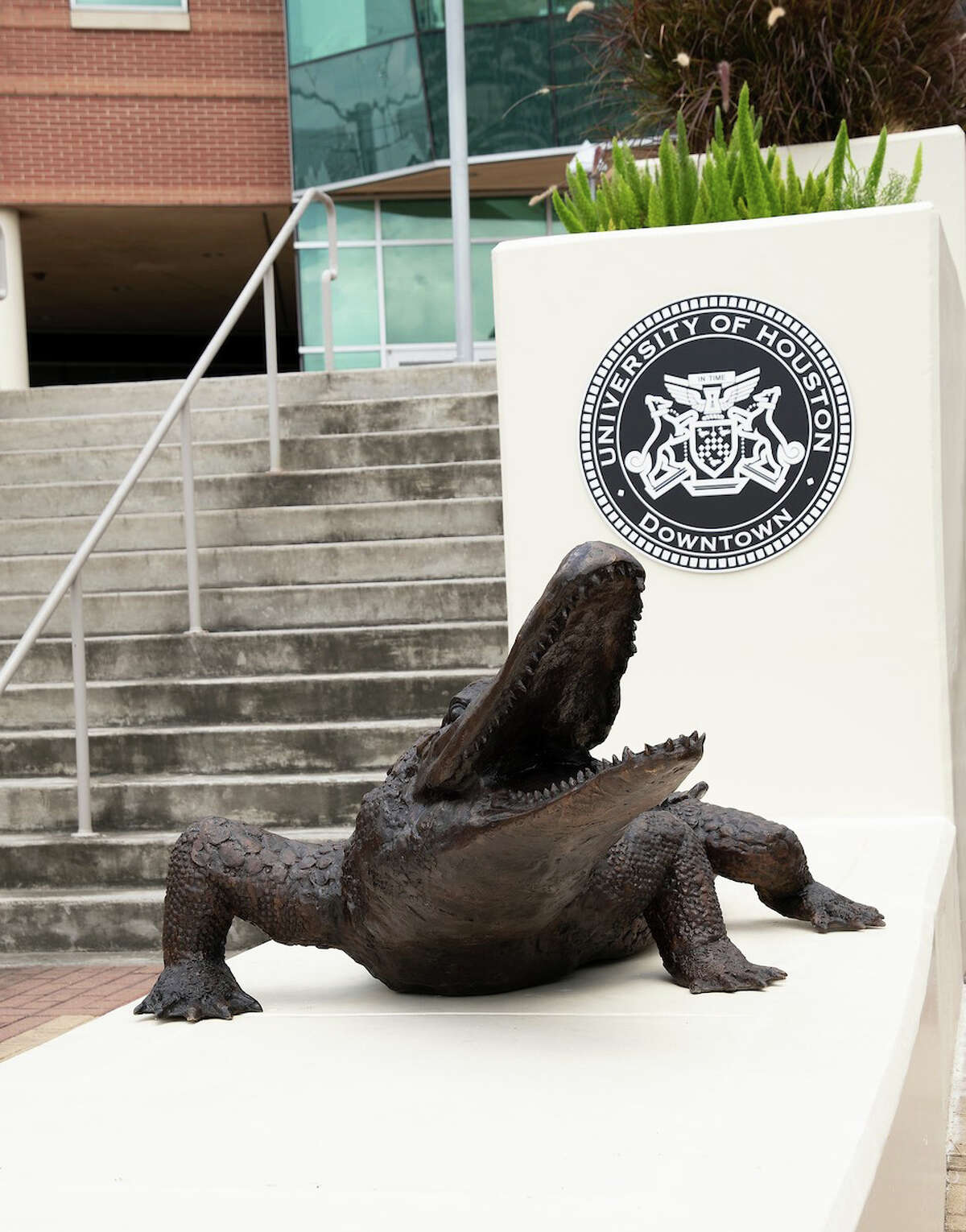 The next time you walk up the front steps of the UH Downtown's Shea Street Building, home of the Marilyn Davies College of Business, keep an eye out for the gator there to greet you.